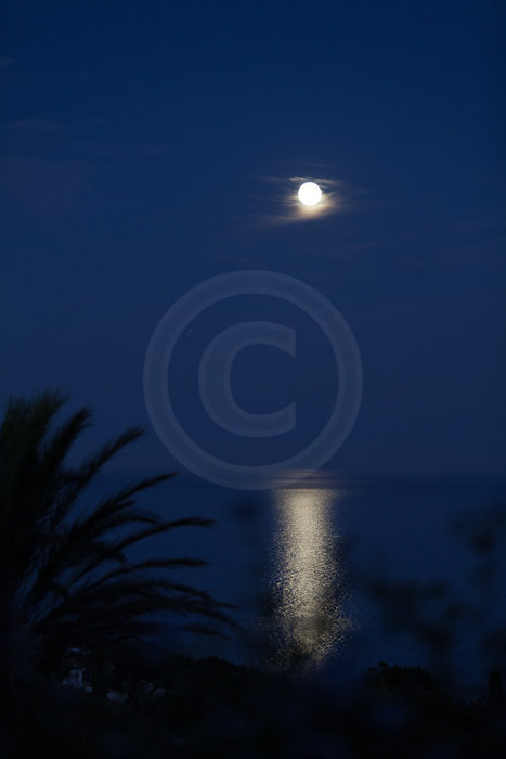 Vollmond am Meer   - proceed to photo gallery