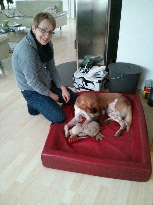 Jannis in seiner Kudde im Wohnzimmer   - proceed to photo gallery