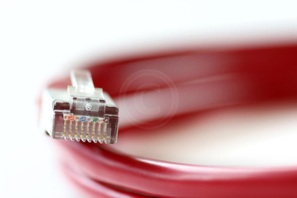 rotes Netzwerkkabel vor wei�em Hintergrund   - proceed to photo gallery